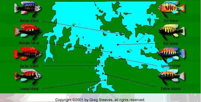map mawanza.jpg