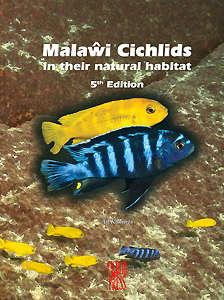 malawi5large.jpg.9ff5fb6ad92abc55fbd4493