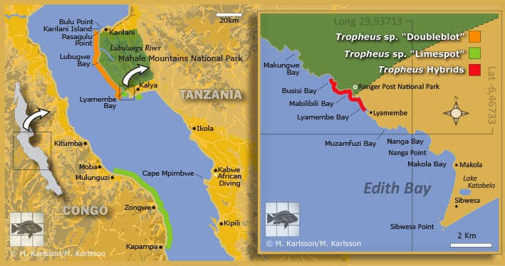 map_lake_tanganyika.jpg