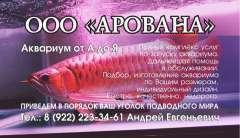 Арованна_Визитка_4+0.jpg