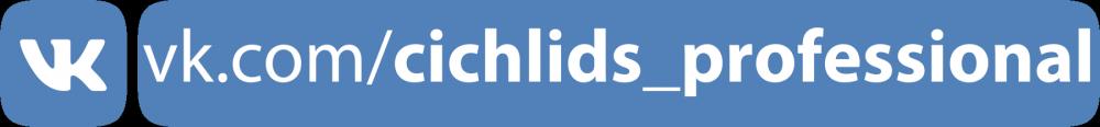 cichlids_professional.png